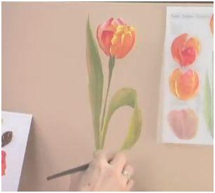 pintar-tulipan
