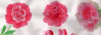 dibujo-y-pintura-rosas