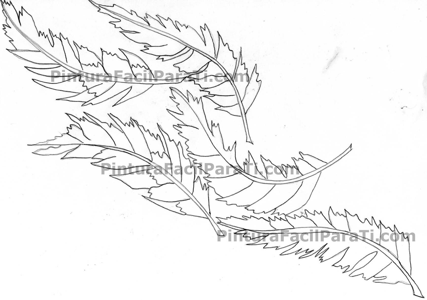 pintura-en-tela-plumas